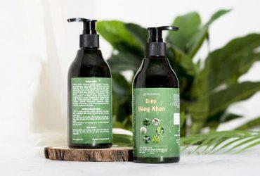 5 loại dầu gội trị vẩy nến da đầu được chuyên gia khuyên dùng