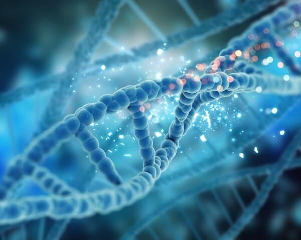 Tuy không thể lây nhưng bệnh lại có tỷ lệ di truyền rất cao