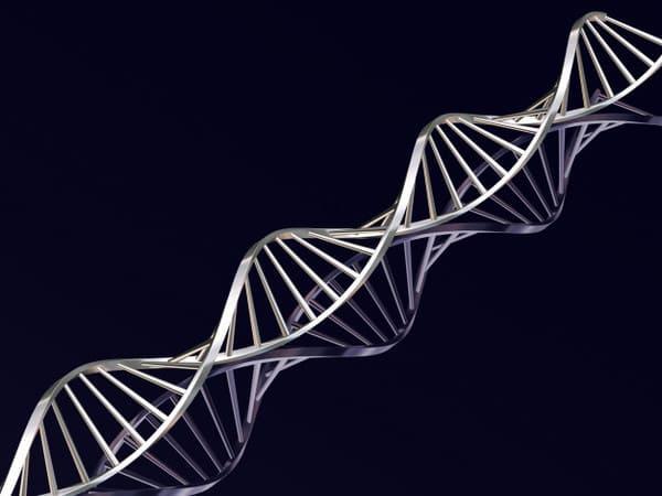 Bệnh mề đay có yếu tố di truyền
