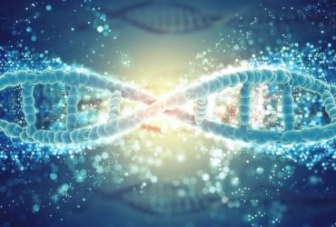 Bệnh viêm da cơ địa có di truyền không?