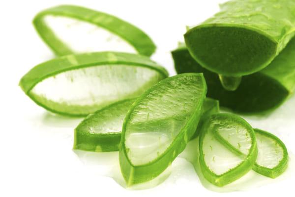 Nha đam có vai trò rất tốt cho việc dưỡng ẩm, bảo vệ và tái tạo làn da